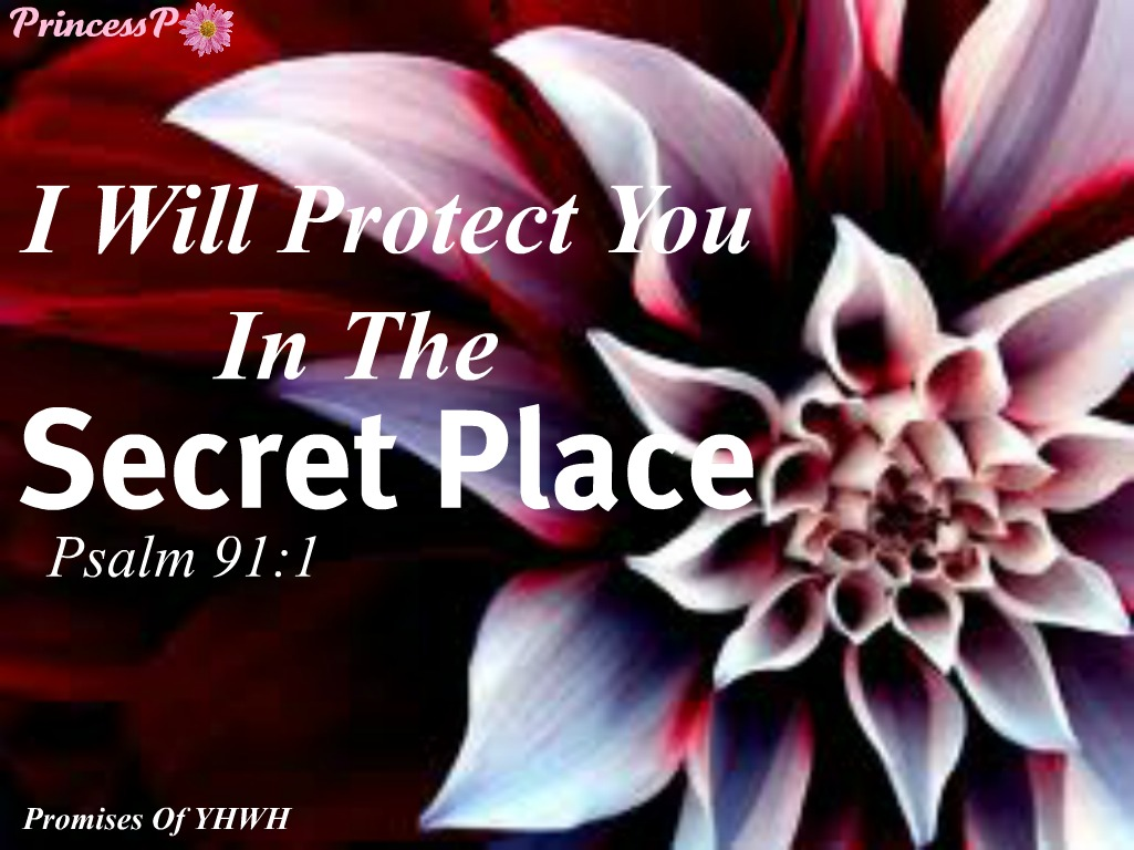 Psalms 91 1 Kjv He That Dwelleth In The Secret Place Of Most