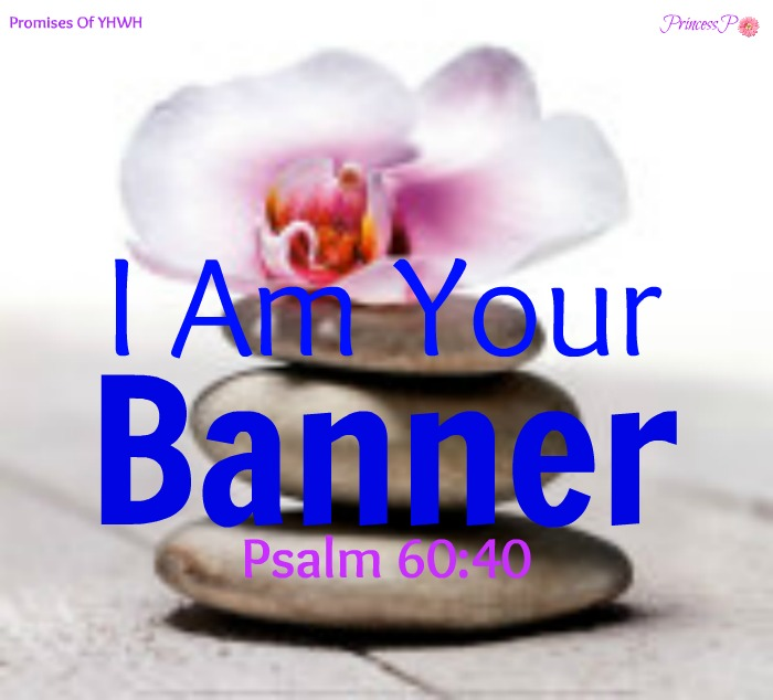 I Am Your Banner