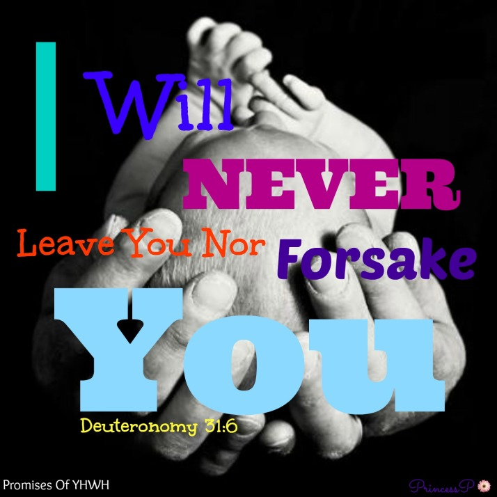 I Will Never Leave You Nor Forsake You - Deuteronomy 31_16